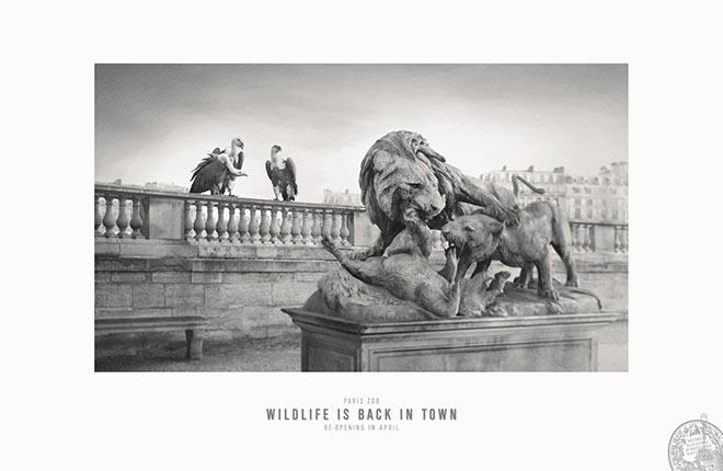 paris-zoo 3