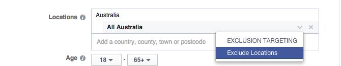 facebooks ads demographics